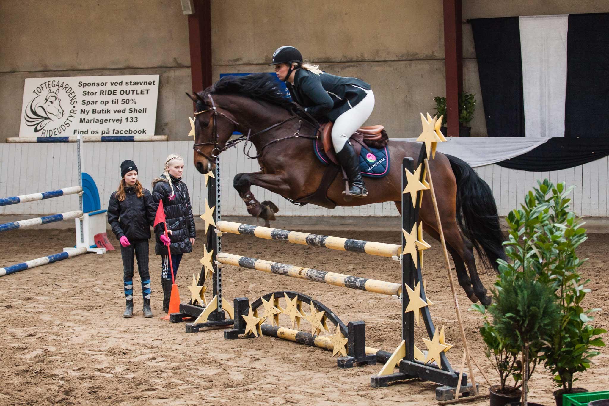LB1--Springning-Heste-(105-cm)-B0