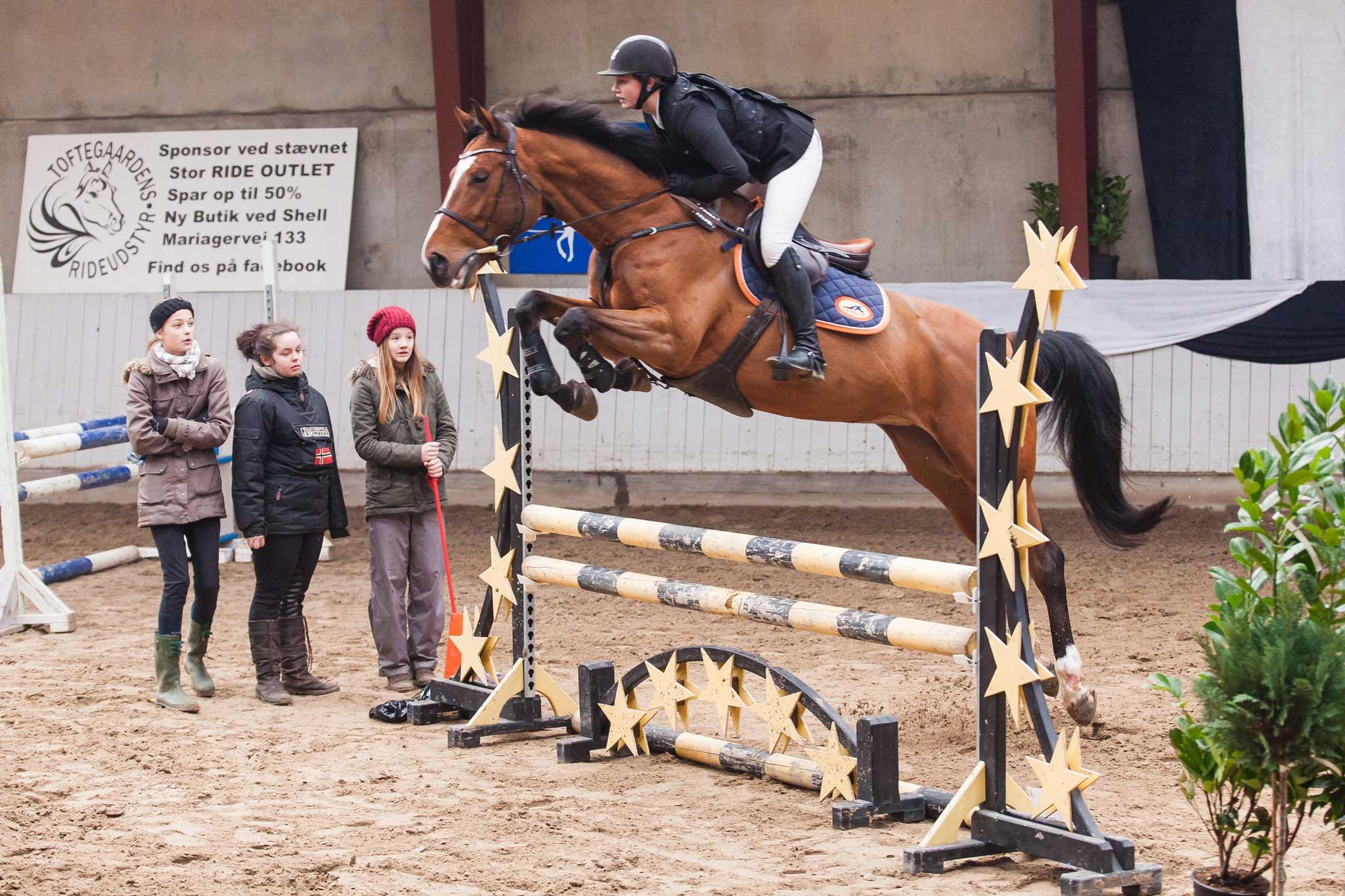 LC-Springning-Heste-(100-cm)-B0