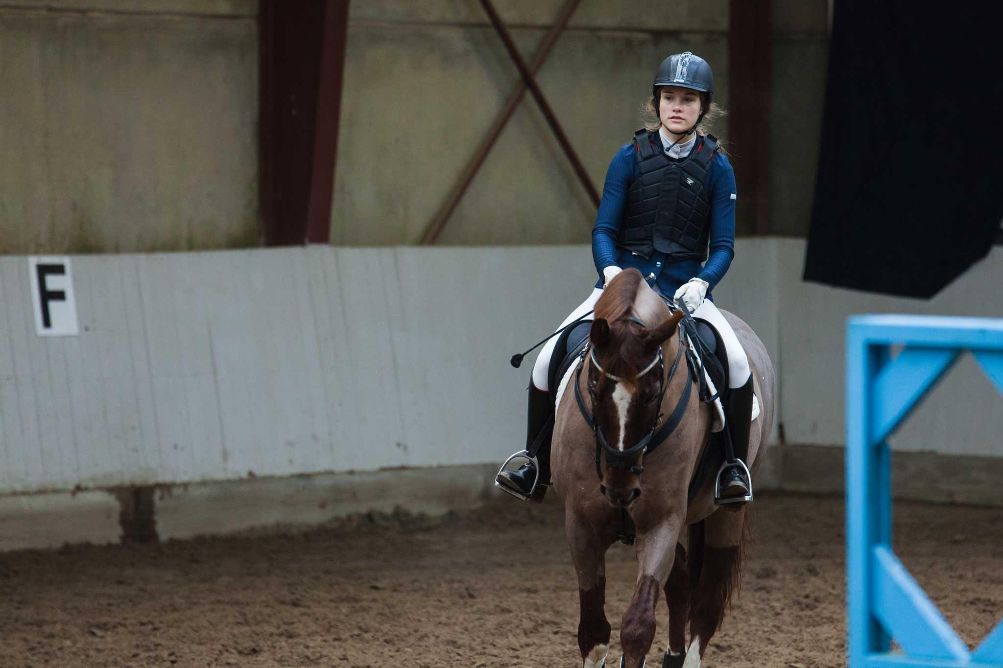LC-Springning-Heste-(100-cm)-S4